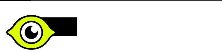 lemon.io vetted freelance developers